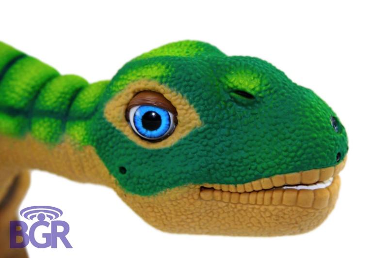 Pleo6