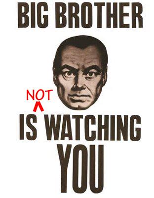 brother_not_watching