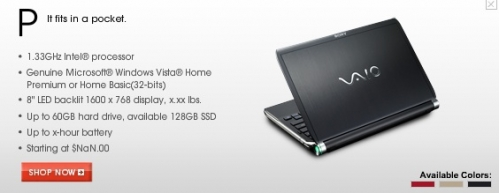 SOny Vaio P Series Netbook