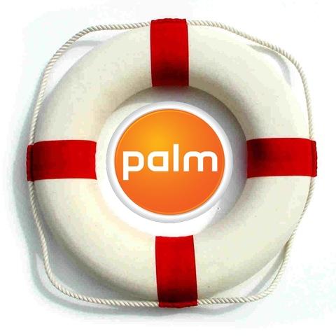 life-preserver PALM