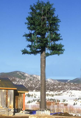 tree3-738212