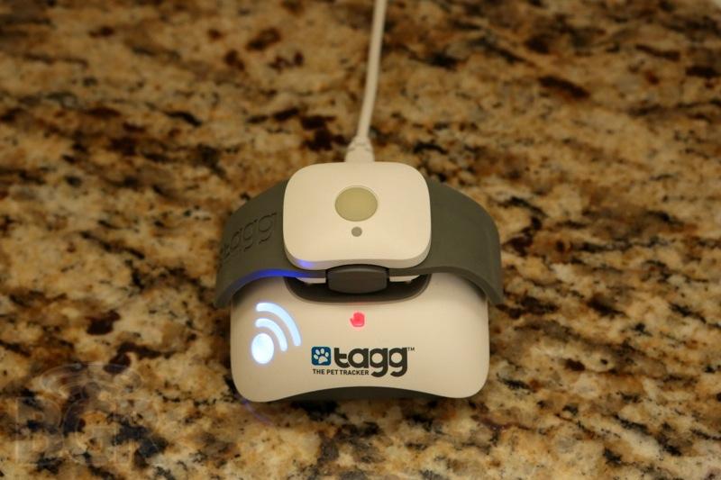 tagg-pet-tracker-2