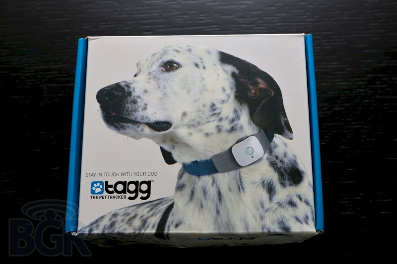 tagg-pet-tracker-4