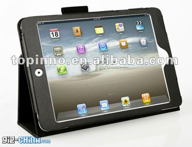 iPad Mini Photos Case