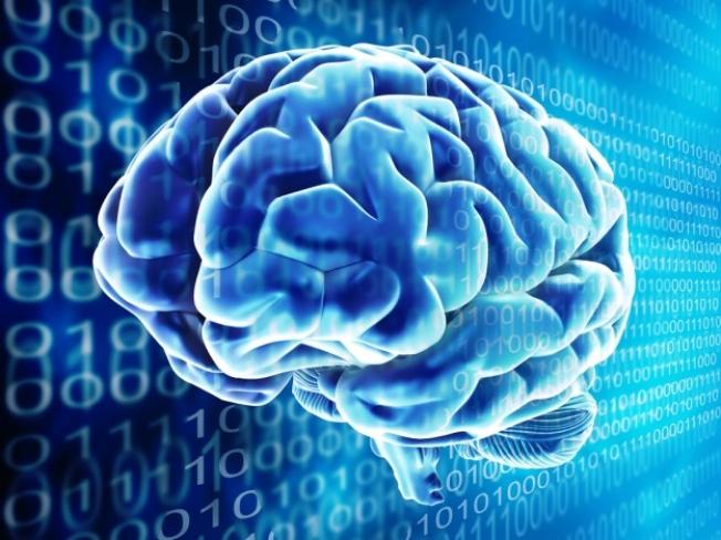 Google Virtual Brain