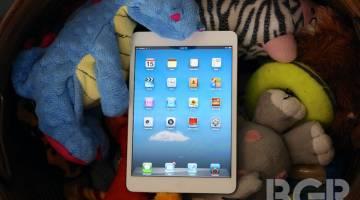 Apple iPad Mini Display LG