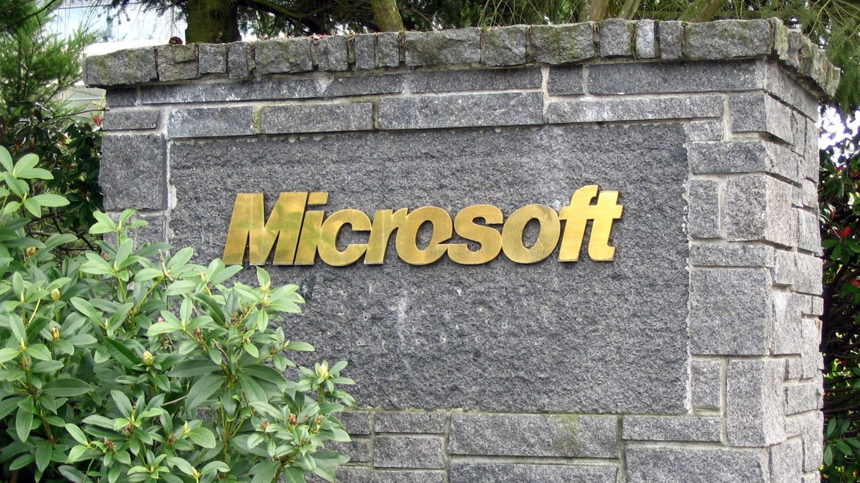Microsoft Employee Evaluation Criticism