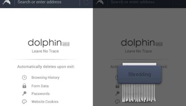 Dolphin Zero Private Web Browsing