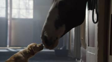 Top-5 Super Bowl Commercials