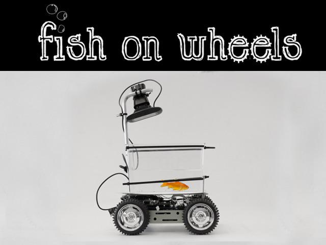 fish-on-wheels