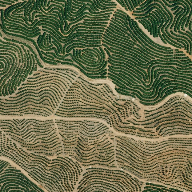 earth-patterns-3