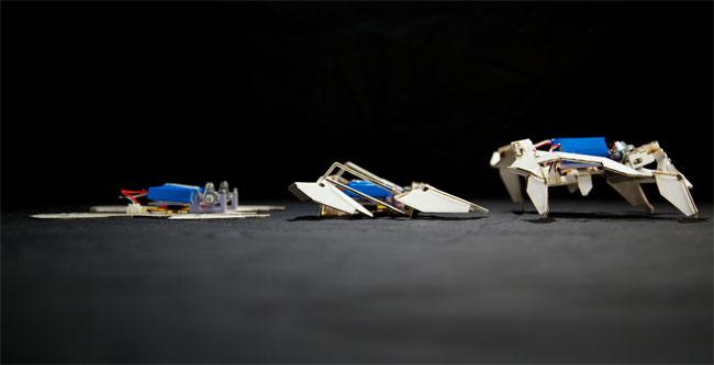 World's Coolest Robots Folding