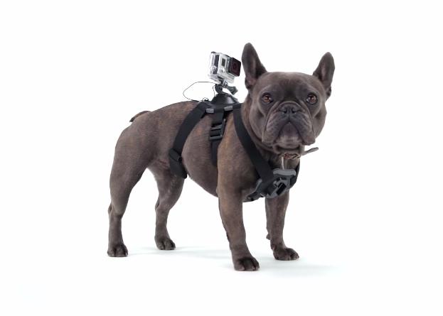 Best GoPro Camera Accessories