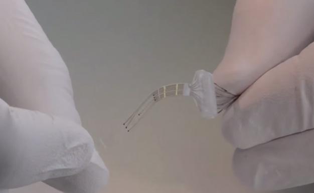 e-Dura Spinal Cord Implant