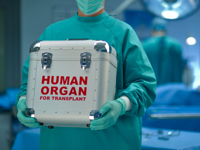 Penis Transplant: First Successful Surgery