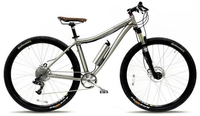 Titanio 29er Electric Bike