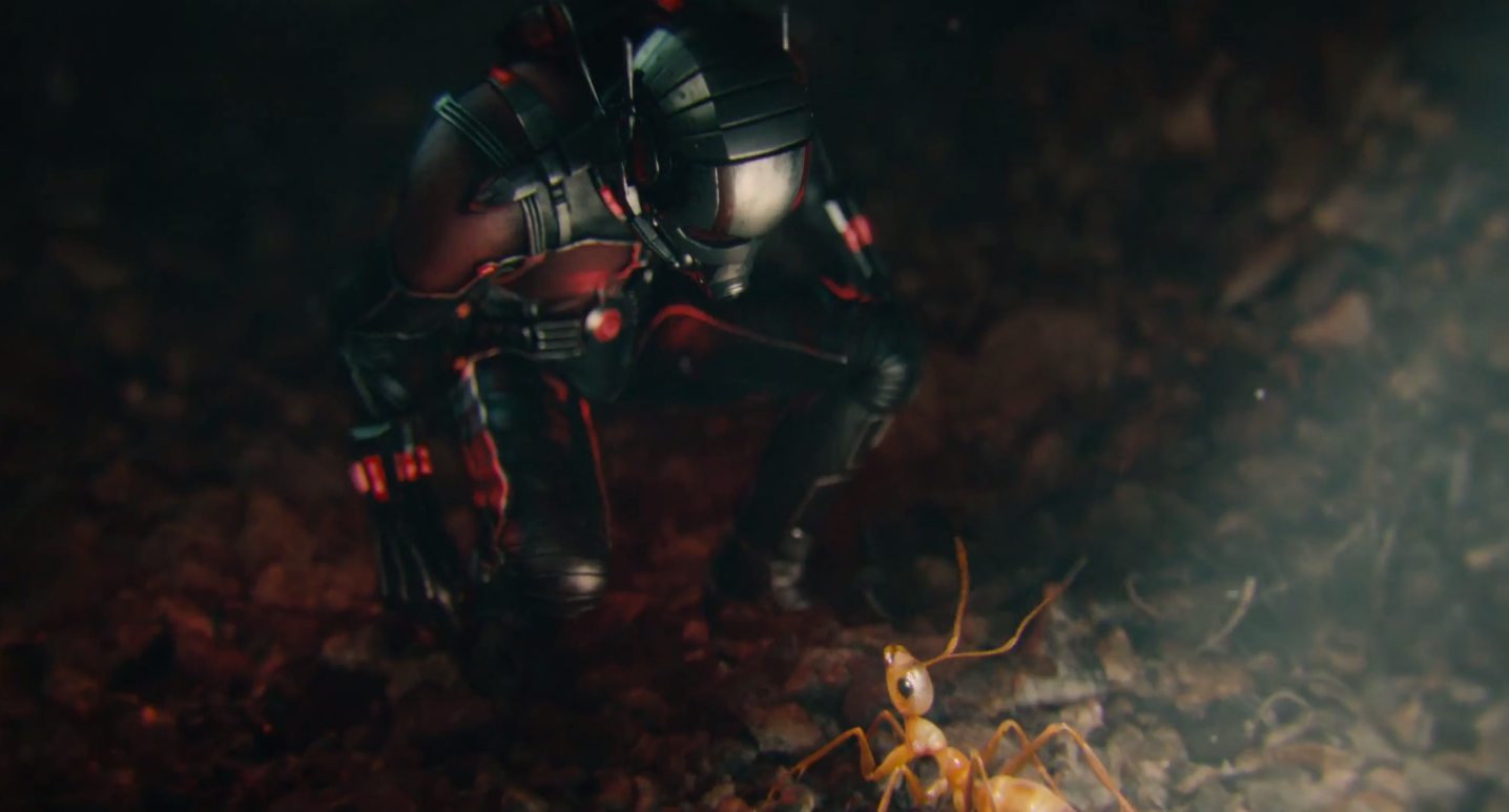 ant man - photo #41