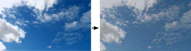google-photos-neural-networks-sky-birds