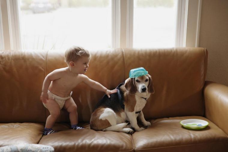 Dog Heaven Letter Kid Mailman
