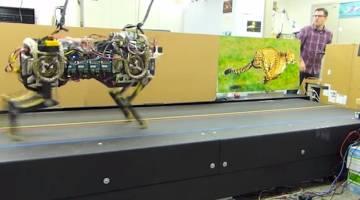 Robot Cheetah Video