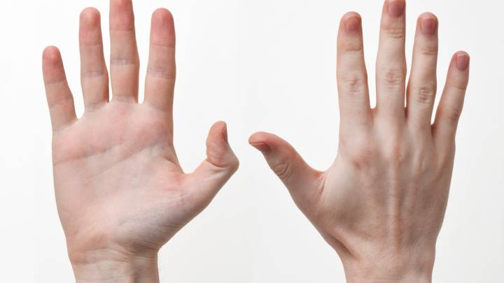 Human Hand Fingers Size Explanation