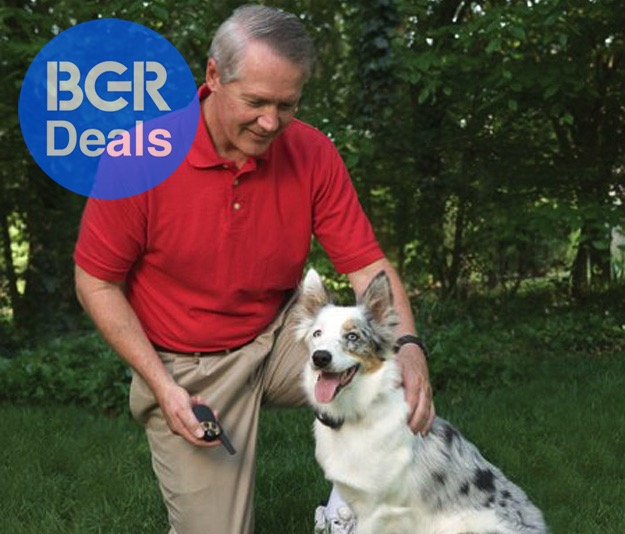 Stop Your Dog From Barking With Huge Deals On 5 Bark