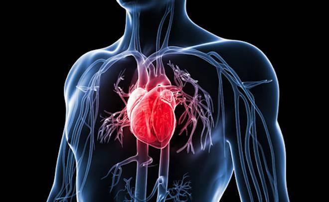 Heart Disease Cholesterol Fast Test