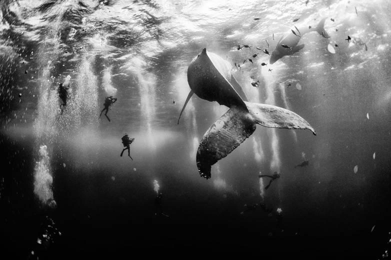 National Geographic Traveler Photo Contest Winners