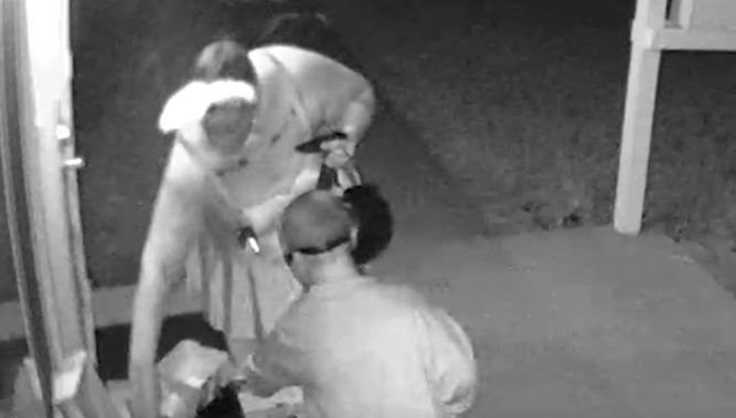 Viral Video Mother Steals Halloween Candy