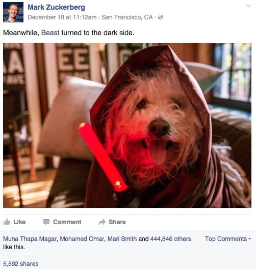 mark zuckerberg dog
