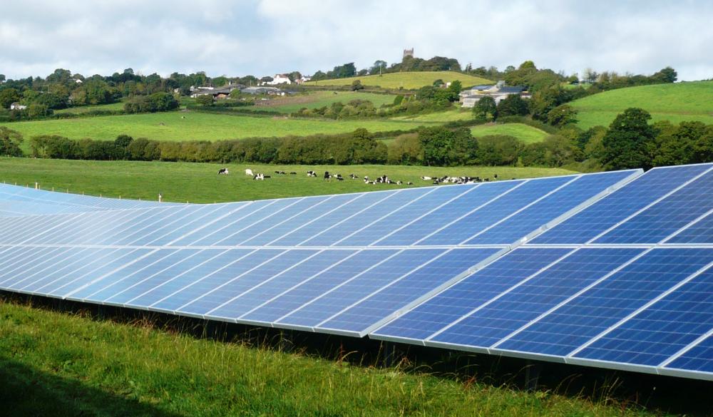 Solar Farm Soaking Sun