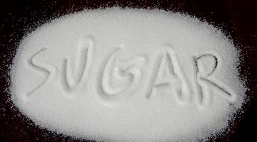 Diabetes Obesity Cure Sugar Fat