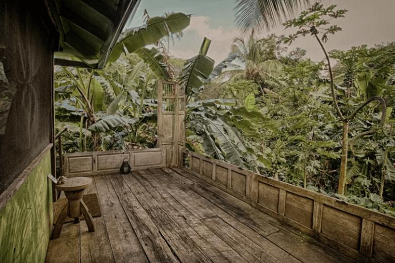 Treehouse Hawaii