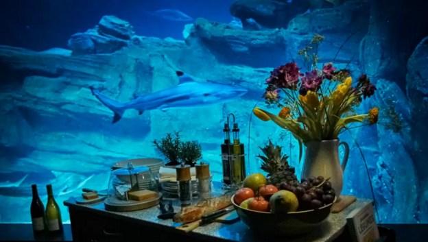 airbnb-shark-paris-aquarium-bedroom-3