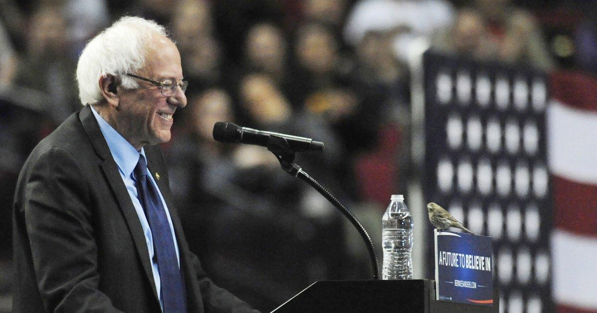 Can Bernie Win The Nomination