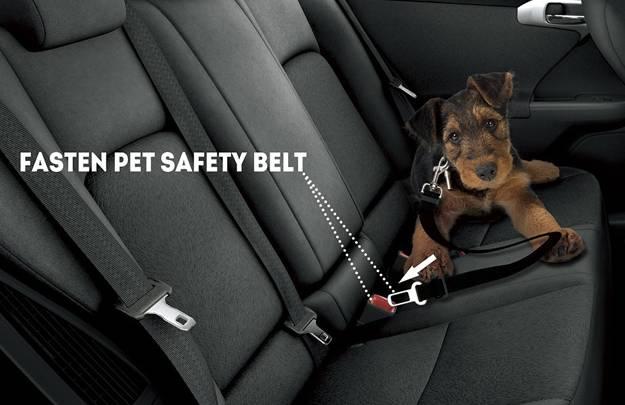 Dog Seat Belt Harness