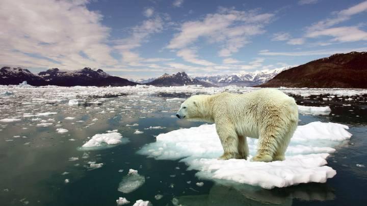 Climate Change Paris Agreement Study