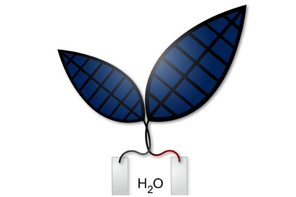 V2.0-bionic-leaf-605