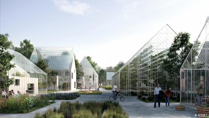 ReGen Village Effekt Project