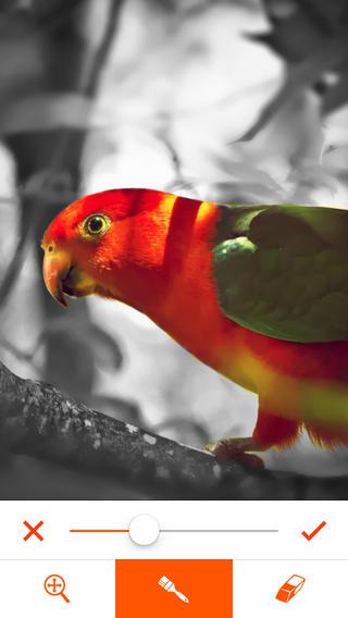 phoenix-photo-editor