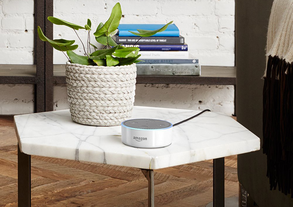 Echo Dot Accessories