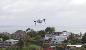 drone delivery pizza