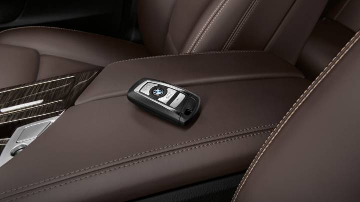 bmw theft protection