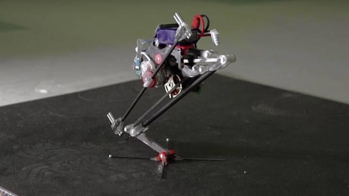 Salto Parkour Jumping Robot
