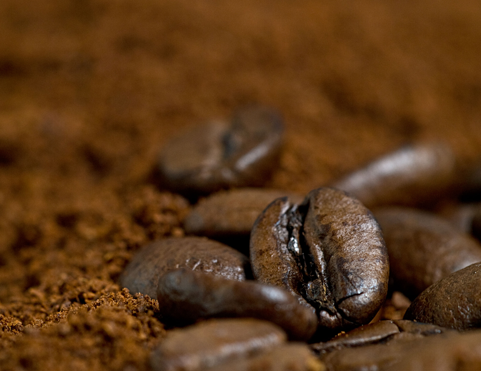 coffee genome