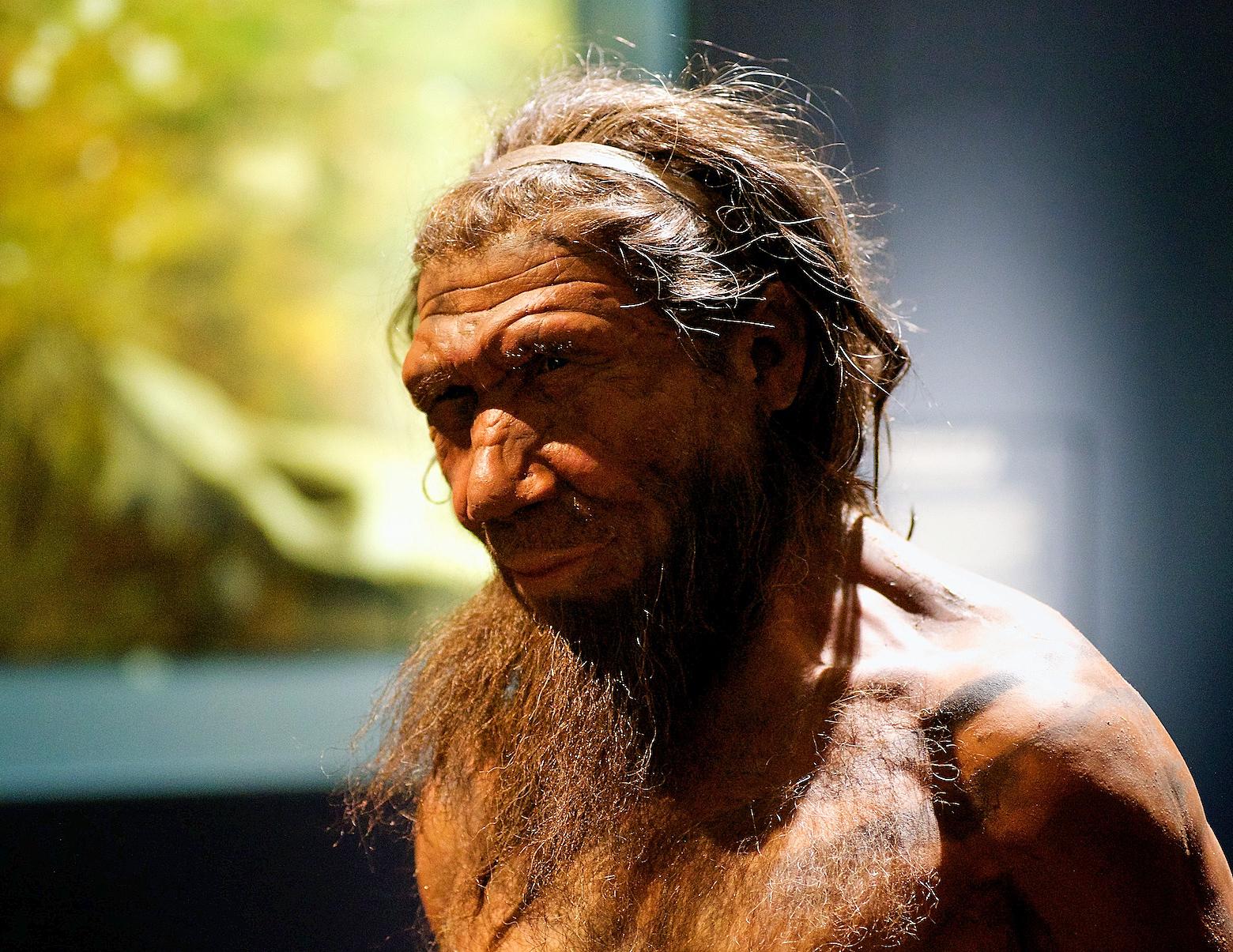 first humans