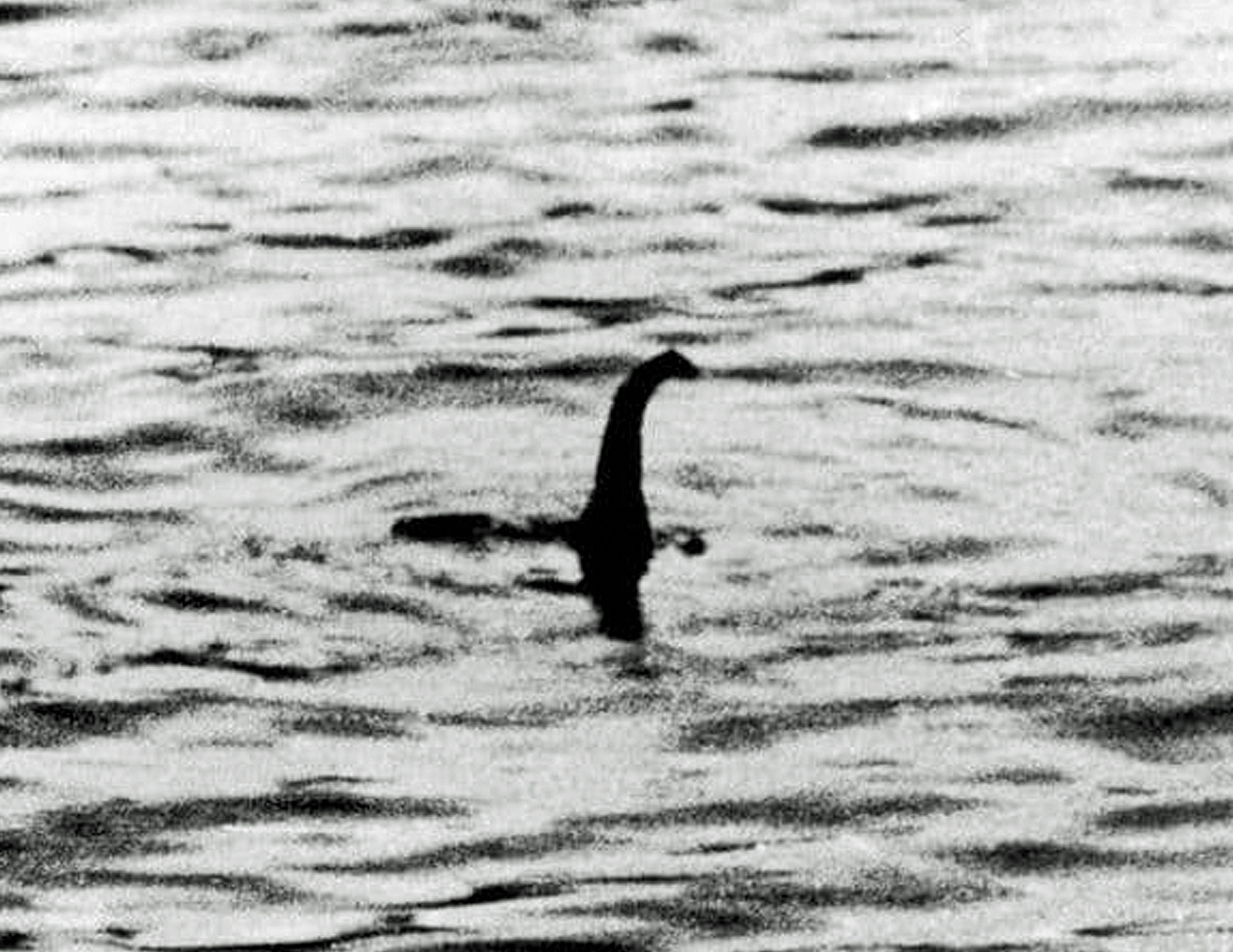 loch ness monster sightings