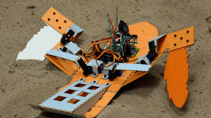 minesweeping robots
