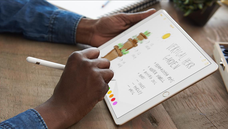 iPad vs. iPad Pro 2019