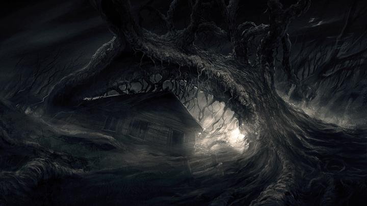Darkwood developers